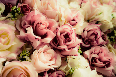 roses garden: Vintage old flower backgrounds - vintage effect style pictures Stock Photo