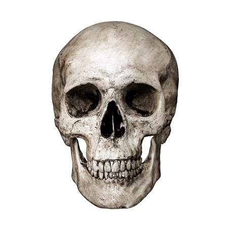 Front side view of human skull on isolated black background with clipping path