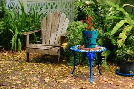 Garden drop photo