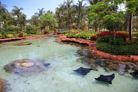 bahamas: Atlantis Hotel op Paradise Island in Nassau, Bahamas.