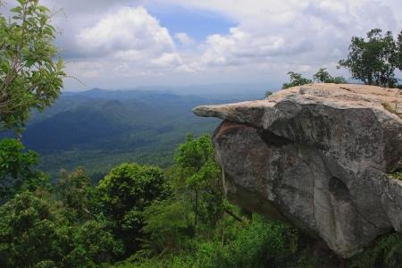 Hight mounten and green tropical jungle , Thailand.