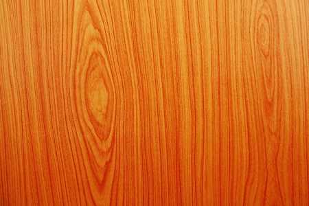 Wood abstract in many pattern and many color photo