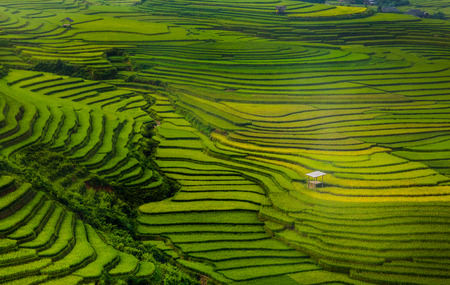 beautiful pictures of nature in Vietnam photo