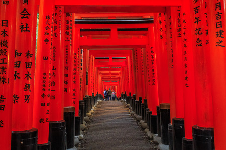 messengers of god: The red pathway to temple in Japan.