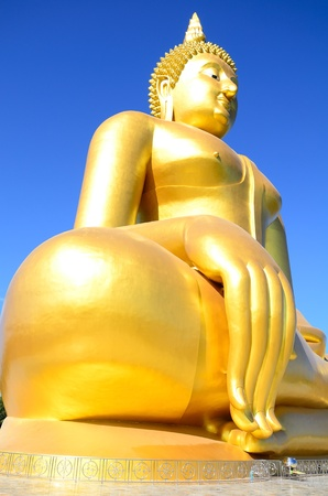 Golden budda Stock Photo - 11914529