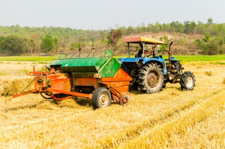 Tractor harvesting rice