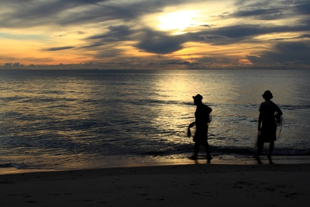 Search for Fish at the Beach