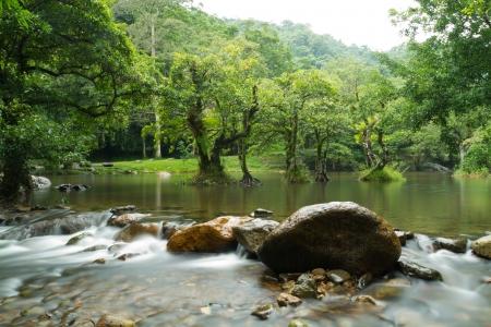 Mountain Water Stream  Stock Photo