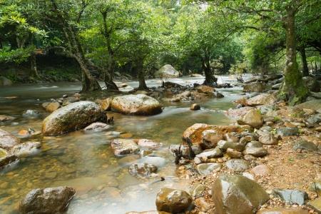 Water stream and stone  Stock Photo