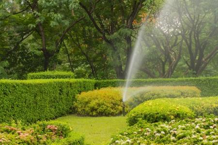 lawn sprinkler: water sprinkler in garden Stock Photo