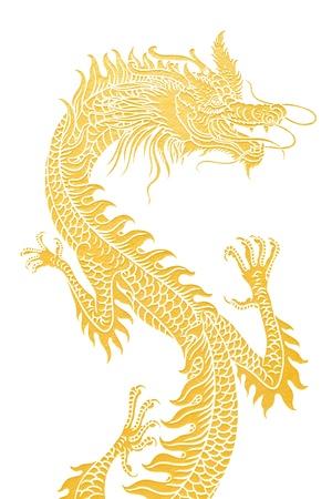 fortune design: Golden dragon isolated on white