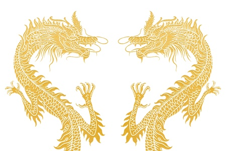 Dragons isolated on white