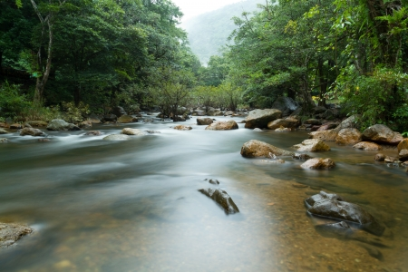River in forest in Thailand  Stock Photo