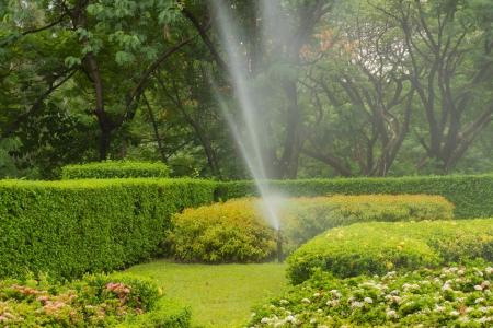 water sprinkler in garden Stock Photo