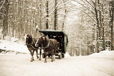Horse-drawn carriage , Neuschweinstein castle in retro style