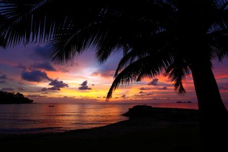 日没のシルエットの海で 写真素材