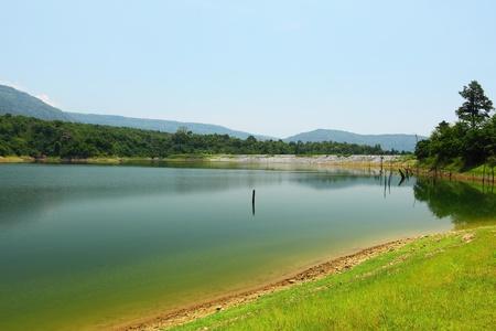 死んだ木と貯水池