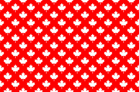 Red maple canada seamless pattern. Vector and Illustration. Illustration