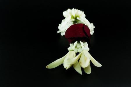 malai: Jasmine garland on  black background