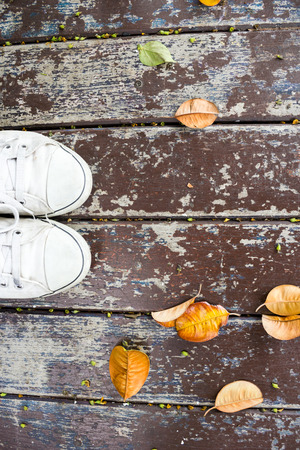 dry leaf: Sneakers with Dry leaf on wooden background
