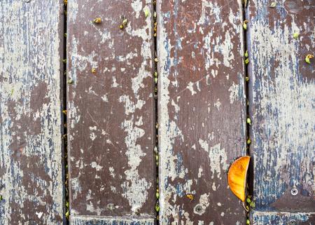 dry leaf: Dry leaf on wooden background