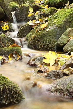 cascade: autumn spring cascade Stock Photo