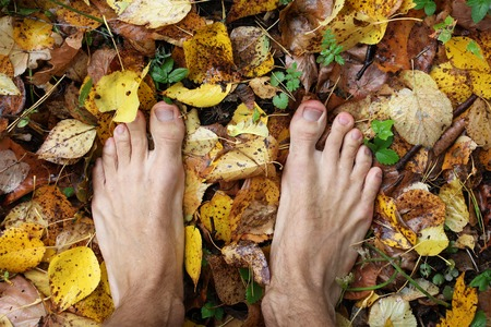 bare man feet stands on colored autumn foliage, charged with power from earth, top view, closeup Stock fotó