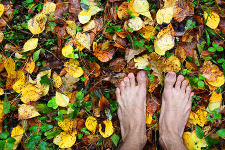 bare man feet stands on colored autumn foliage in the right bottom corner of the frame, charged with power from earth, top view, copy space