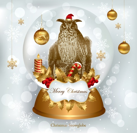 Christmas snowglobe with owl Vector