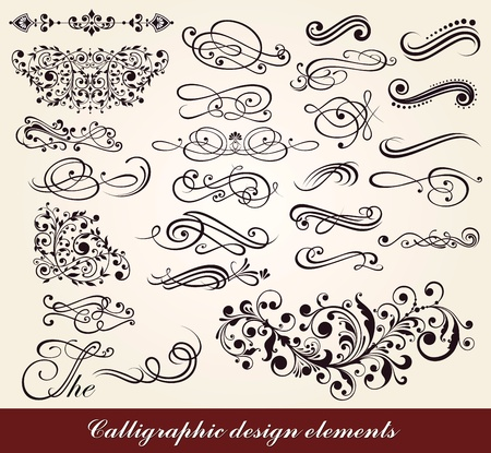 placecard: Vector set: calligraphic design elements  Illustration