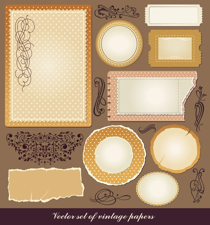 Vector set of various vintage papers Vector