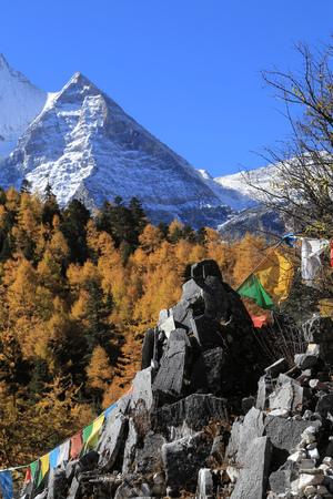 lamaism: snowy mountain at Yading