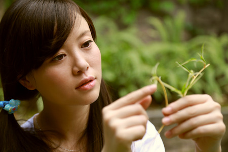 ni�as chinas: Ni�as chinas est�n observando plantas