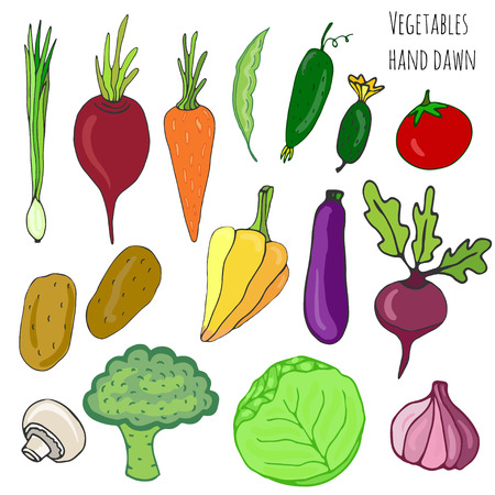 Vegetable hand drawn set. Isolated vegetables vector illustration. Vegetable stylized collection for design Vector