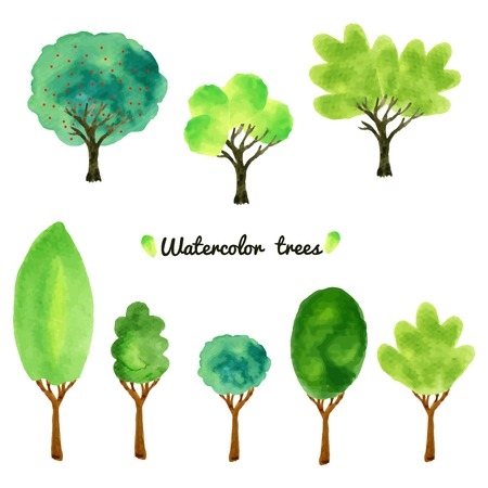 Watercolor style vector illustration of a collection of trees, shrubs, and grasses, isolated vector