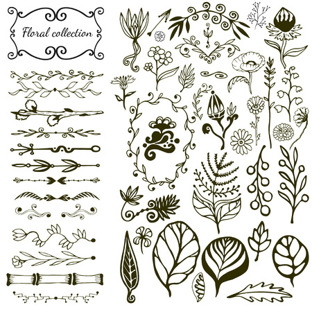 doodle: Hand drawn floral big set with wild flowers, leaves, swirls, border. Vector with nature elements collection for design decoration