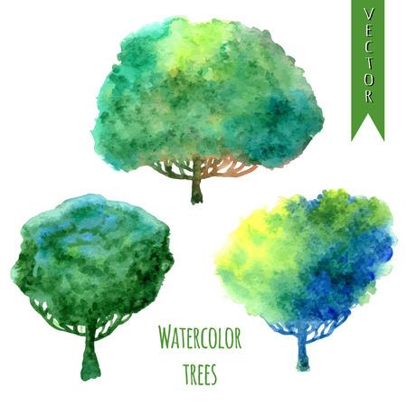 水彩木を設定します。夏の木。水彩の緑の木々 分離ベクトルをデザインで設定