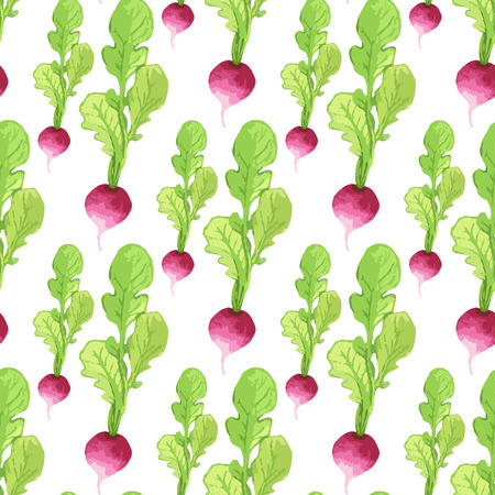 Watercolor radish seamless pattern. Organic product vector hand paint background