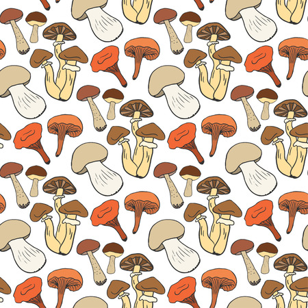 edible: Hand drawn mushrooms seamless pattern in color. Doodle sketch vector background with edible mushrooms. Healthy food.