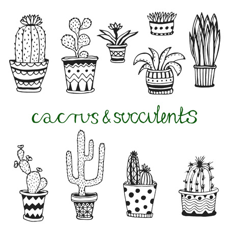 Hand drawn succulent and cactuse set. Doodle florals in pots. Vector botanical set with cute house interior plants Ilustracja