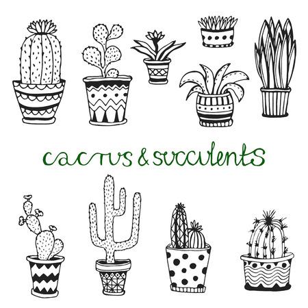 Hand getrokken sappig en cactuse set. Doodle bloemen in potten. Vector botanische set met leuke huis interieur planten
