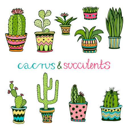 ?actuse and succulent hand drawn set. Doodle florals in pots. Vector colorful cute house interior plants Vettoriali