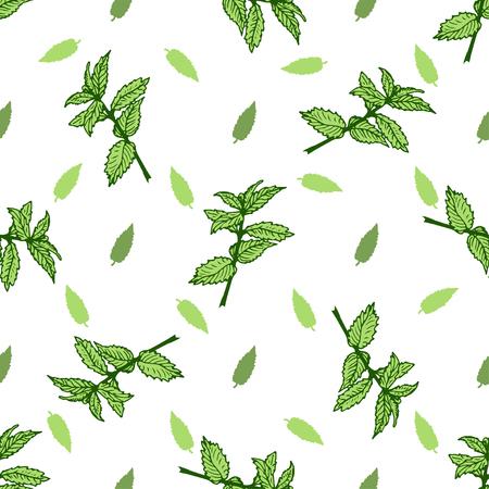 leaf illustration: Sketch herbal mint tea. Hand drawn vector seamless pattern.