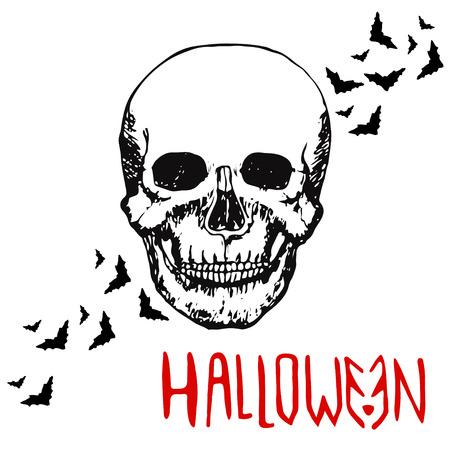 all souls' day: Skull head. Halloween background. Hand drawn vector Illustration
