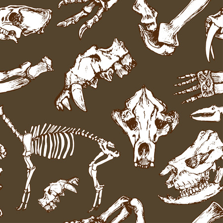 archeology: Sketchy prehistorical animals pattern. Archeology excavations, skeleton and skulls seamless vector