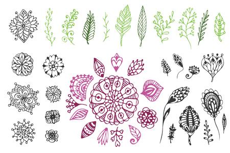 自然のコレクション。落書き花と枝の手描きイラスト。ページとデザインの装飾を着色。