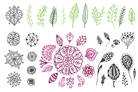 Nature collection. Hand drawn illustration with doodle flowers and branches. For coloring page and design decoration.
