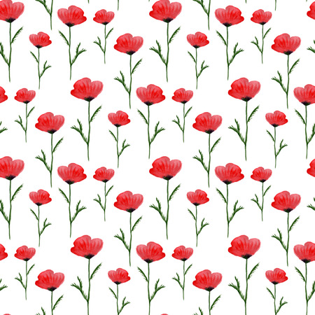 poppy field: Watercolor seamless floral pattern. Hand paint watercolor poppies background. Can be used for wrapping, textile, wallpaper and package design