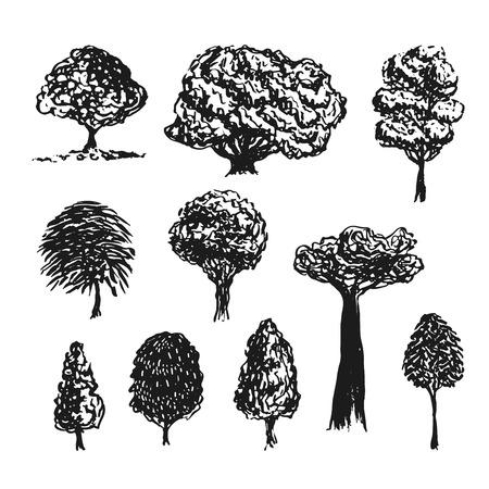 Silueta de los árboles Vector de la decoración. Mano bocetos dibujados aislaron el conjunto. Ilustración de vector