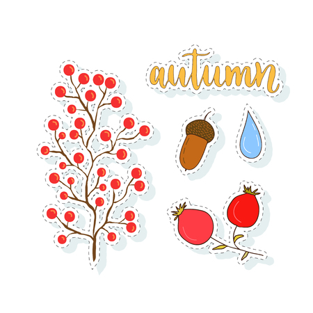 Autum stickers set with berries and acorn. Vector collection for design decorations